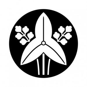 kokumochijinukitachiomodaka-450x450